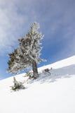 Paisaje del invierno en el Mt Dobratsch Fotos de archivo