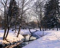 Paisaje del invierno en el puente del río del parque Fotografía de archivo