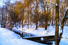 Paisaje del invierno en el puente del río del parque Imagen de archivo libre de regalías