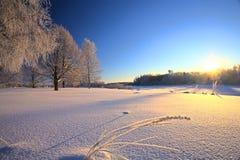 Paisaje del invierno en la puesta del sol Imágenes de archivo libres de regalías