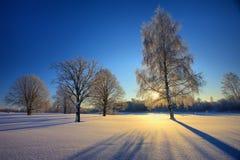 Paisaje del invierno en la puesta del sol Foto de archivo