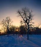 Paisaje del invierno en la puesta del sol fotos de archivo