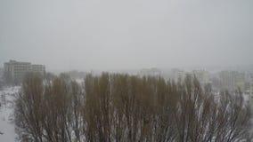 Paisaje del invierno en las cercanías de la ciudad almacen de video