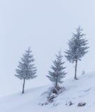 Paisaje del invierno en las montañas Fotografía de archivo