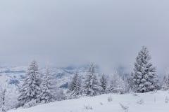 Paisaje del invierno en las montañas Fotos de archivo libres de regalías