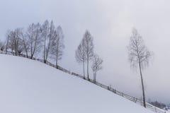 Paisaje del invierno en las montañas Imagen de archivo libre de regalías
