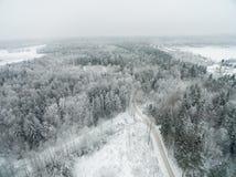 Paisaje del invierno en Lituania Árbol y bosque Nevado fotos de archivo