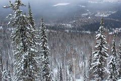 Paisaje del invierno en montañas Fotos de archivo libres de regalías
