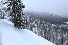 Paisaje del invierno en montañas Fotografía de archivo libre de regalías