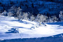 Paisaje del invierno en Noruega Imagen de archivo libre de regalías