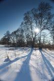 Paisaje del invierno en Polonia fotografía de archivo libre de regalías