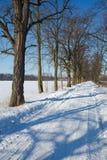 Paisaje del invierno en Polonia foto de archivo libre de regalías