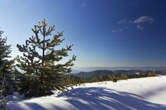 Paisaje del invierno en Rodopi mountain_6 Imágenes de archivo libres de regalías