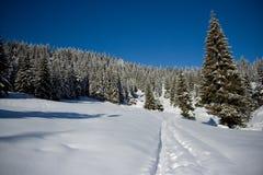 Paisaje del invierno en Rumania Fotos de archivo
