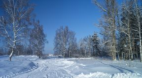 Paisaje del invierno en terreno rural Imagenes de archivo