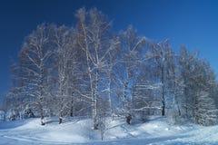 Paisaje del invierno en terreno rural Imagen de archivo libre de regalías