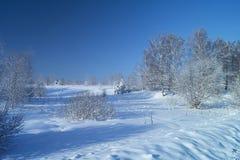 Paisaje del invierno en terreno rural Fotos de archivo libres de regalías