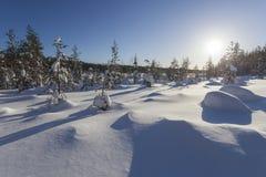 Paisaje del invierno en un día soleado fotos de archivo