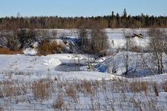 Paisaje del invierno en un día soleado en un campo Foto de archivo libre de regalías