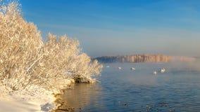 Paisaje del invierno en un río con el bosque en helada, Rusia, Ural Foto de archivo