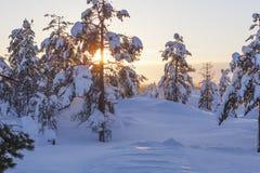 Paisaje del invierno en una puesta del sol imagen de archivo