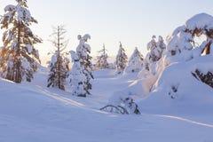 Paisaje del invierno en una puesta del sol fotografía de archivo libre de regalías