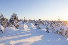 Paisaje del invierno en una puesta del sol foto de archivo libre de regalías