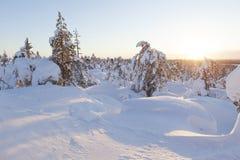 Paisaje del invierno en una puesta del sol foto de archivo