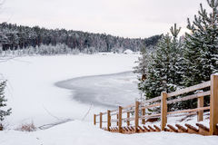 Paisaje del invierno - escaleras abajo al lago congelado del bosque Foto de archivo libre de regalías