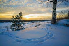 Paisaje del invierno, huellas de la puesta del sol en la nieve Fotografía de archivo libre de regalías