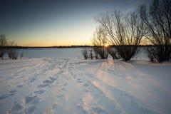 Paisaje del invierno Huellas en la nieve fotos de archivo libres de regalías