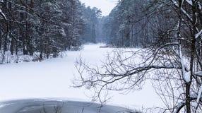 Paisaje del invierno Lago winter fotografía de archivo libre de regalías