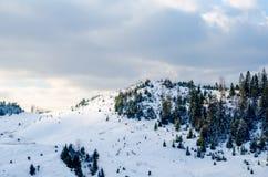 Paisaje del invierno, los tops de las montañas cárpatas bajo cov Imagen de archivo libre de regalías