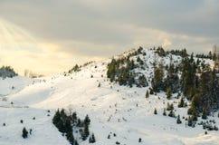 Paisaje del invierno, los tops de las montañas cárpatas bajo cov Fotografía de archivo