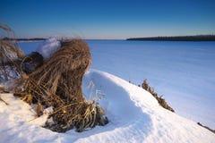 Paisaje del invierno Morón seco de la turba imagenes de archivo