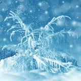 Paisaje del invierno, nevada Imágenes de archivo libres de regalías