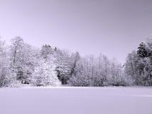 Paisaje del invierno Nevado Foto de archivo