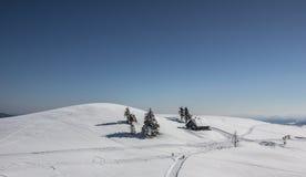 Paisaje del invierno Nevado con los árboles y la cabaña Foto de archivo libre de regalías