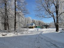 Paisaje del invierno del pueblo, día claro Imagen de archivo