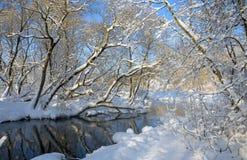 Paisaje del invierno que sorprende Paisaje con el río que fluye imagen de archivo