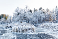 Paisaje del invierno, río debajo del hielo Imágenes de archivo libres de regalías