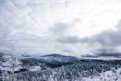Paisaje del invierno del top de la montaña en Canadá, Quebec imagen de archivo