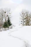 Paisaje del invierno, trayectoria al top de la montaña nevosa, Fotografía de archivo