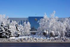 Paisaje del invierno, Uralsk, Kazajistán del oeste imagenes de archivo