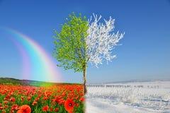 Paisaje del invierno y de la primavera con el cielo azul imagen de archivo