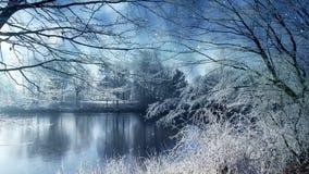 Paisaje del invierno y nieve que cae stock de ilustración
