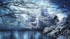 Paisaje del invierno y nieve que cae almacen de metraje de vídeo