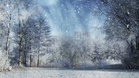 Paisaje del invierno y nieve que cae metrajes