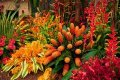 Paisaje del jardín Foto de archivo libre de regalías