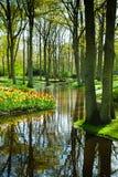 Paisaje del jardín de la primavera Imágenes de archivo libres de regalías